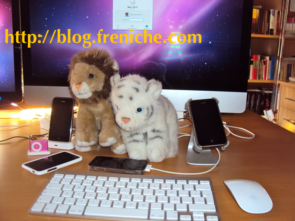 Download Snow Leopard & Lion :-)
